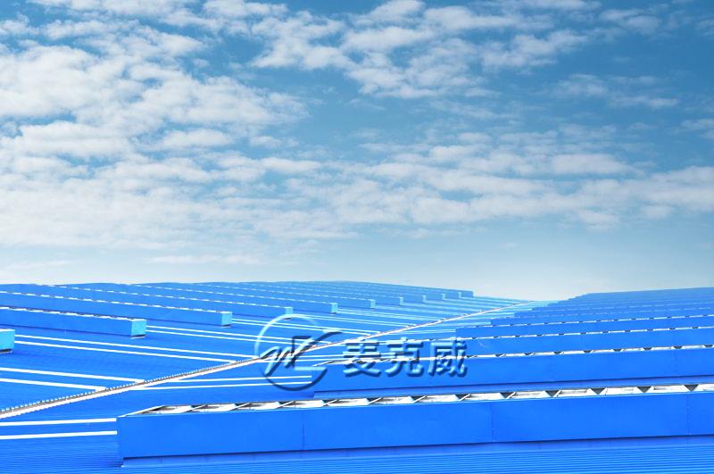 武汉武船双柳特种船舶项目