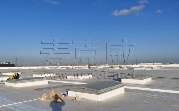 上海特斯拉工厂一字型电动排烟天窗项目
